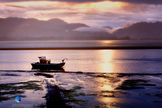 Photographing the oregon coastline pamphotography for Tillamook bay fishing