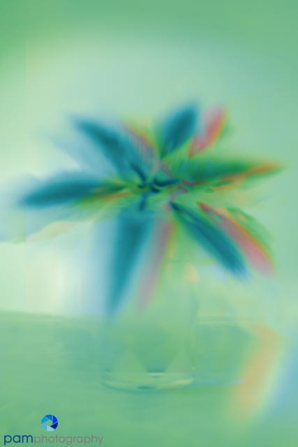 1301_MFA_Art Flowers_112-Edit