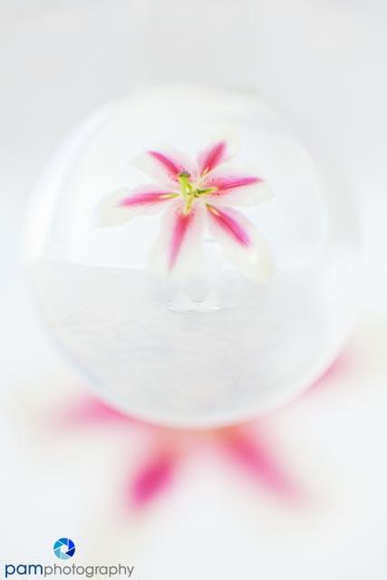 1301_MFA_Crystal Ball_002-Edit