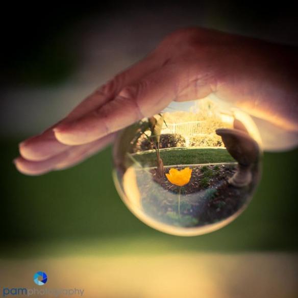 1303_MFA_Crystal Ball_041
