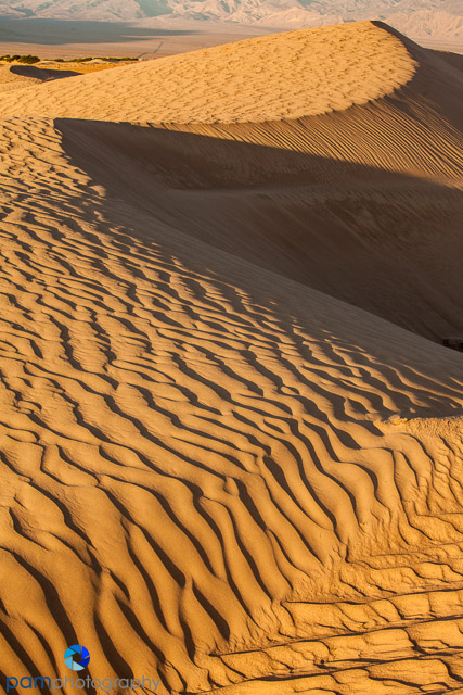 1304_MFA_Death Valley_0044