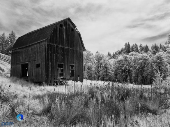 1305_PSA_Portland Infrared_021-Edit-Edit