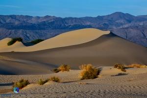 1304_PSA_Death Valley_0131-Edit-Edit-Edit-Edit