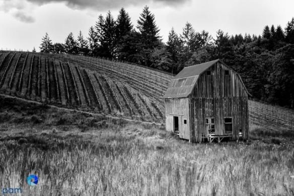 1106_PSA_Oregon_609-Edit-Edit