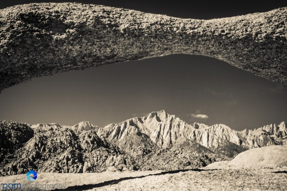 One of Mar's infrareds with a sepia finish.  Lone Pine Peak