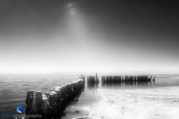 1310_MFA_Salton Sea Infrared_023-Edit