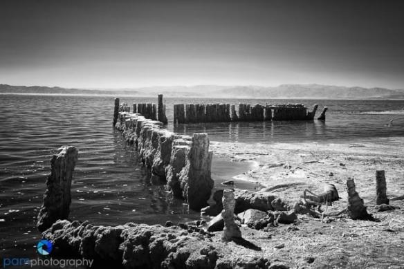 1310_PSA_Salton Sea Infrared_020-Edit