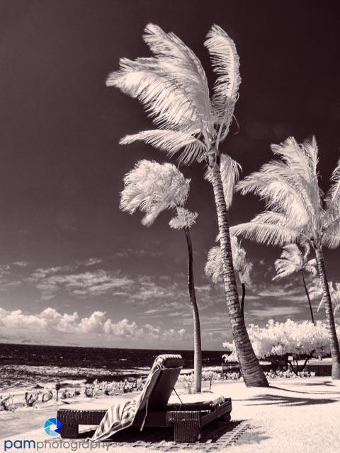 1306_MFA_Hawaii_042-Edit-2
