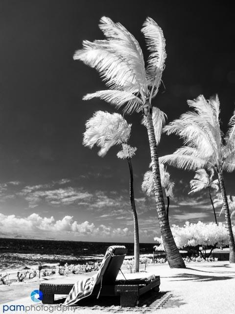 1306_MFA_Hawaii_042-Edit-3