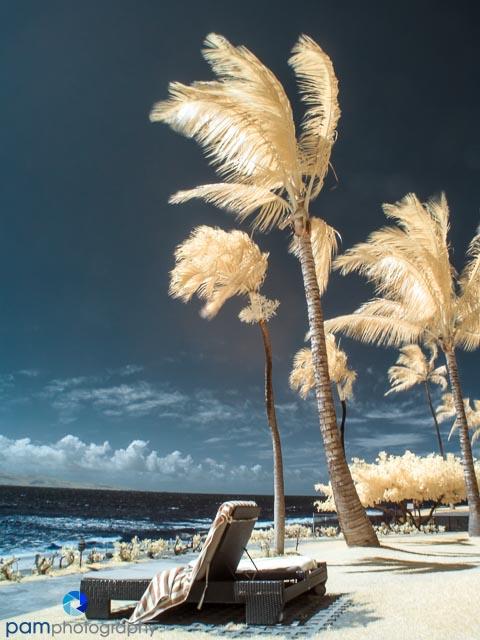 1306_MFA_Hawaii_042-Edit