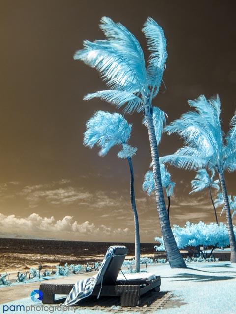 1306_MFA_Hawaii_042