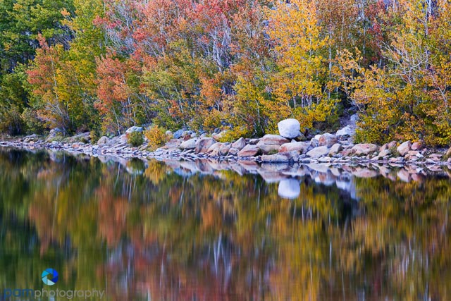 Fall color reflection at North Lake near Bishop, CA