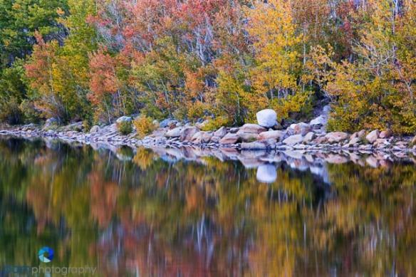 Fall color reflection at North Lake near Bishop, CA
