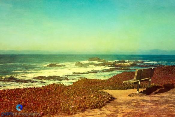 1312_MFA_CA Coast_057-Edit