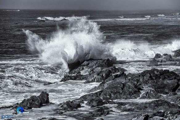 1312_MFA_CA Coast_058-Edit