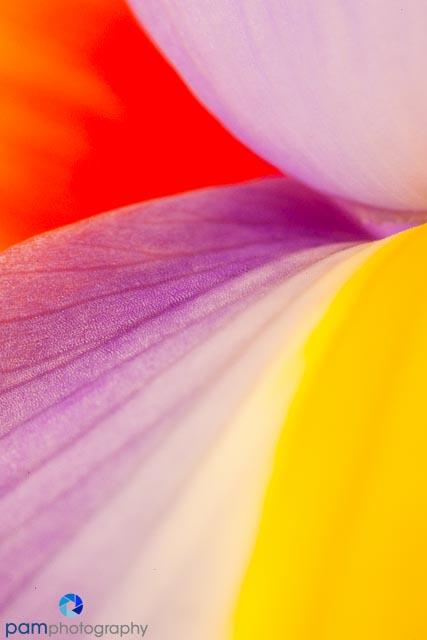 1402_MFA_Flower_040