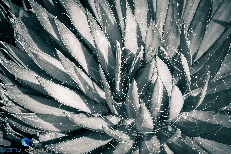1402_MFA_San Diego_126