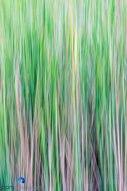 1405_MFA_DU Abstracts_052