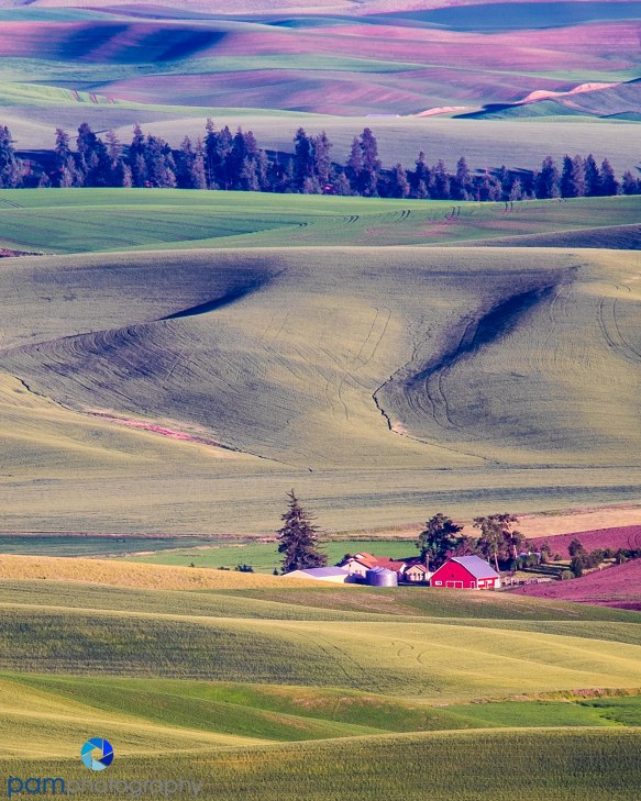 1406_MFA_Palouse_0414-Edit-Edit
