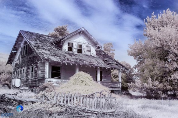 Haunted House - color infrared (Mary)
