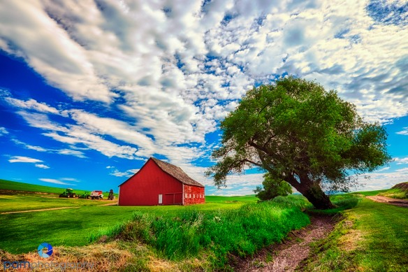 1406_MFA_Palouse_0569_HDR-Edit