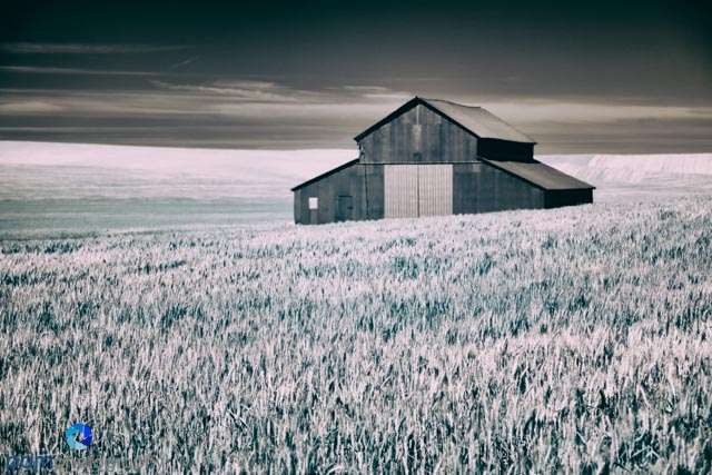 1406_PSA_Palouse Infrared_1141-Edit