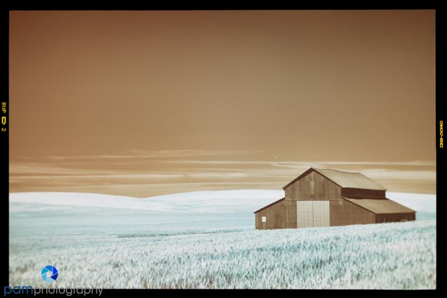 1406_PSA_Palouse Infrared_1153-Edit