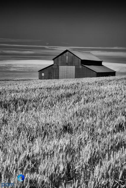 1406_PSA_Palouse Infrared_1155-Edit
