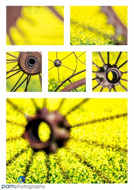 Wheel Collage MFA