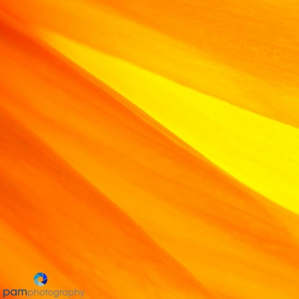 1408_MFA_Abstracts_049