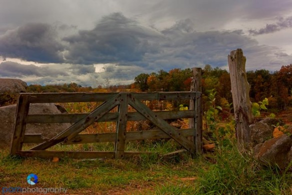 Gate near the Wheatfield