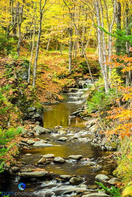 1410_MFA_Vermont_026