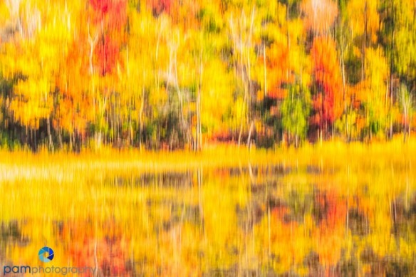 1410_MFA_Vermont_053-Edit