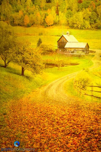 1410_MFA_Vermont_092-Edit