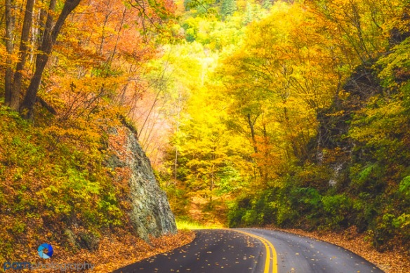 1410_MFA_Vermont_159-Edit