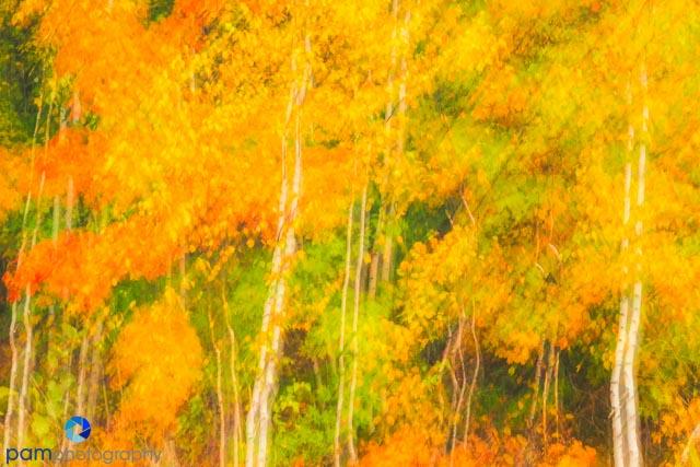 1410_MFA_Vermont_192-Edit