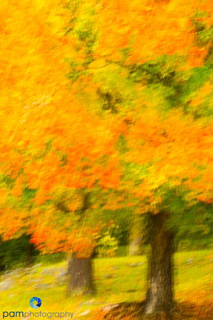 1410_MFA_Vermont_196-Edit