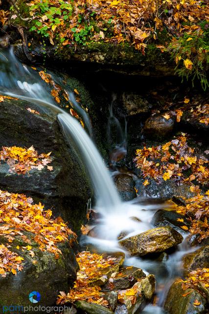1410_PSA_Vermont_147-Edit