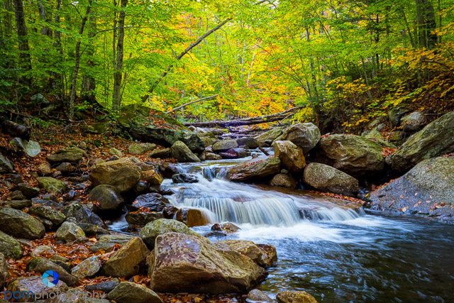 1410_PSA_Vermont_373