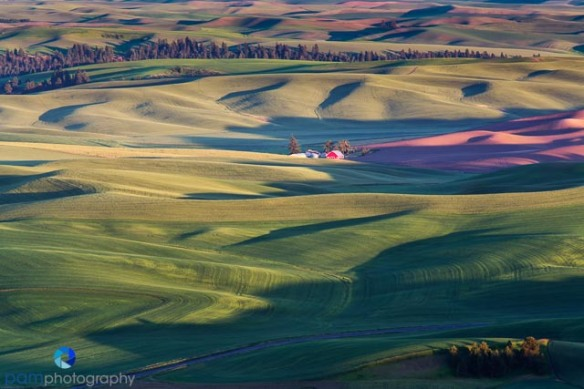 1406_PSA_Palouse_0479-Edit