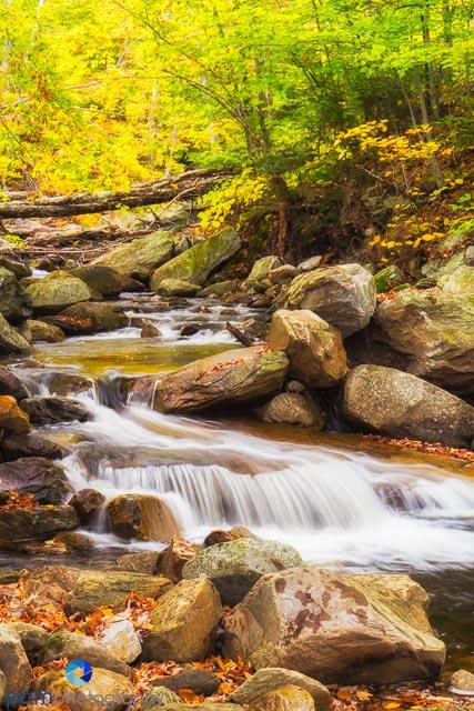 Little Black Brook at the Appalachian Trail Head on Mt. Tabor Road