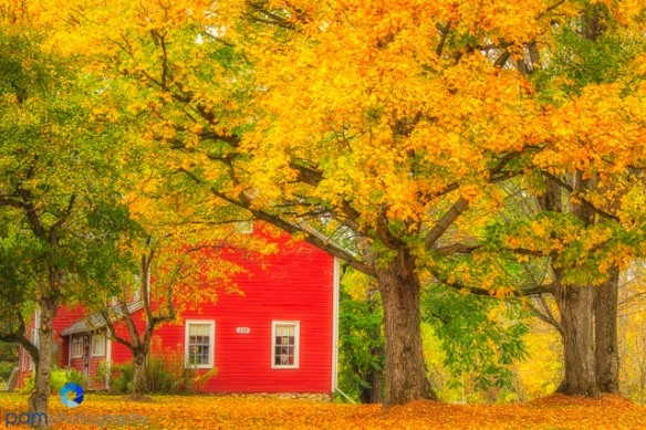 Red house during fall in Vermont