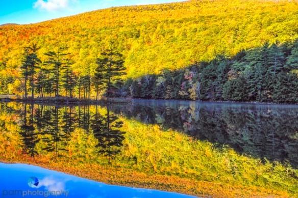 1410_PSA_Vermont_433-Edit-3