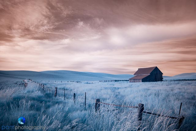 Infrared raw file