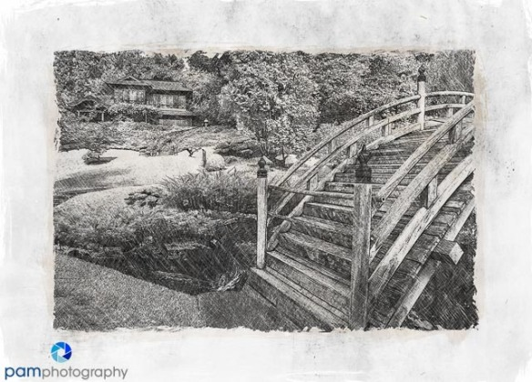 Sketch of moon bridge at the Huntington's Japanese Garden