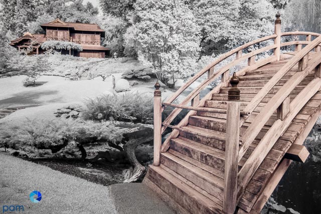 Color infrared image of the moon bridge at the Huntington's Japanese Garden