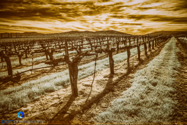 1503_PSA_Temecula_Infrared_044-Edit