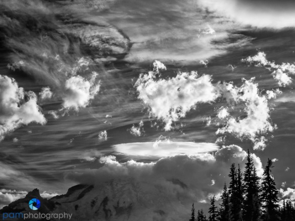 1508_PSA_Rainer_IR_051-Edit