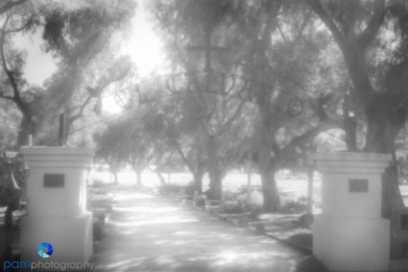 Pinhole Photography - cemetery gate