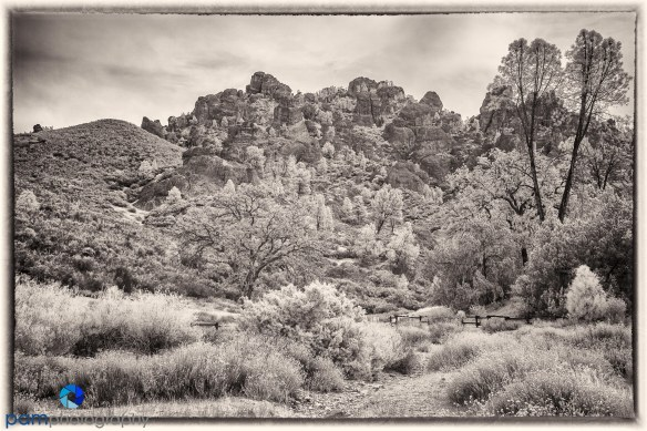 1509_PSA_Pebble_infrared_540-Edit